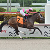 Maystart wins maiden claiming race Monday, September 7, 2020 at Gulfstream Park. Photo: Coglianese Photos/Lauren King