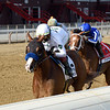 Improbable wins the 2020 Whitney at Saratoga<br /> Coglianese Photos/Chelsea Durand