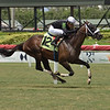 Til the End - AOC, Gulfstream Park, June 19, 2020<br /> Coglianese Photos/Lauren King
