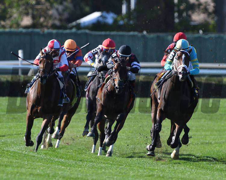 Fire At Will wins the 2020 Pilgrim Stakes at Belmont Park<br /> Coglianese Photos/Dom Napolitano