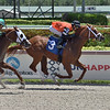 Son of a Beast - Maiden Win, Gulfstream Park, June 24, 2020<br /> Coglianese Photos/Lauren King