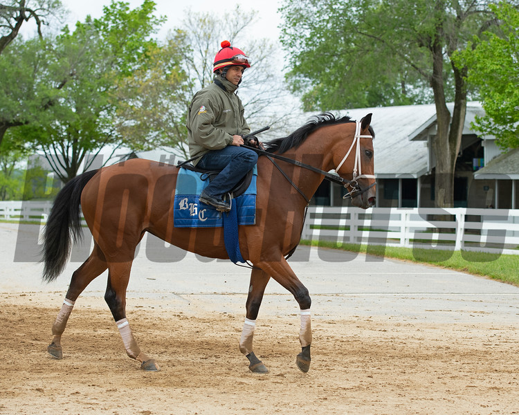 Caption: Vault with Shaun Bridgmohan up<br /> Keeneland scenes and horses on April 25, 2020 Keeneland in Lexington, KY.