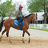 Caption: Vault with Shaun Bridgmohan up<br /> Keeneland scenes and horses on April 25, 2020 Keeneland in Lexington, KY.