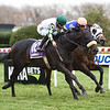 City Man wins the 2020 Gio Ponti Stakes at Aqueduct.<br /> Coglianese Photos