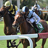 Spanish Loveaffair wins the 2020 Sharp Susan Stakes at Gulfstream Park<br /> Coglianese Photos/Ryan Thompson