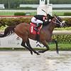 Running for Riz - AOC, Gulfstream Park, July 18, 2020<br /> Coglianese Photos/Lauren King