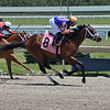 Hyperfocus - Maiden Win, Gulfstream Park, May 9, 2020<br /> Coglianese Photos/Lauren King