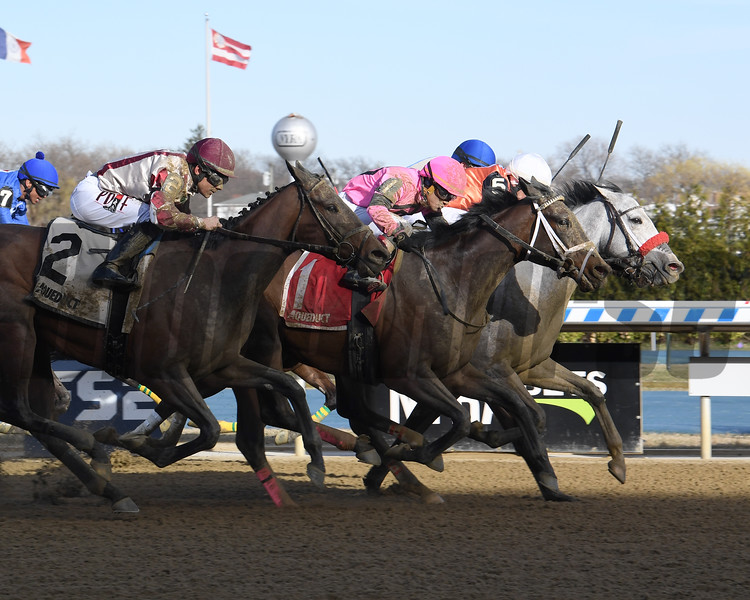 Piedi Bianchi wins the 2020 Correction Stakes at Aqueduct.<br /> Coglianese Photos/Susie Raisher