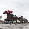 Boca Boy wins the 2020 FTBOA Florida Sire In Reality Stakes at Gulfstream Park<br /> Coglianese Photos/Ryan Thompson