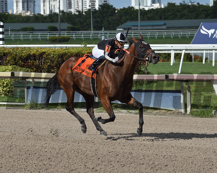 Lady's Island wins the 2020 Musical Romance and Gulfstream Park<br /> Coglianese Photos/Lauren King