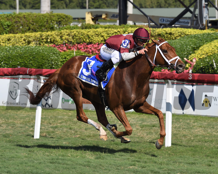 Atomic Blonde wins the 2020 South Beach Stakes at Gulfstream Park<br /> Coglianese Photos