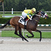 Dem a Wonder - Maiden Win, Gulfstream Park West, November 18, 2020<br /> Coglianese Photos/Lauren King