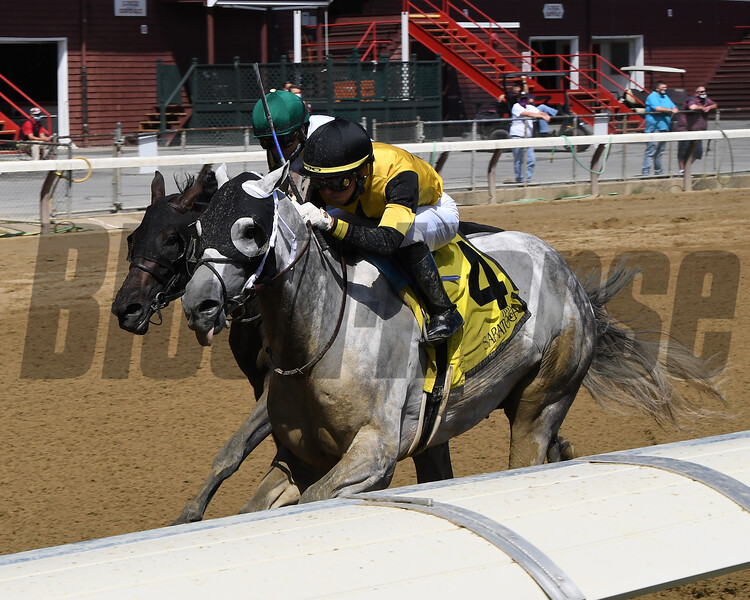 Chestertown wins the 2020 Albany Stakes at Saratoga<br /> Coglianese Photos/Chelsea Durand