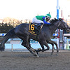 Water White wins the 2020 Busher Stakes at Aqueduct<br /> Coglianese Photos/Susie Raisher