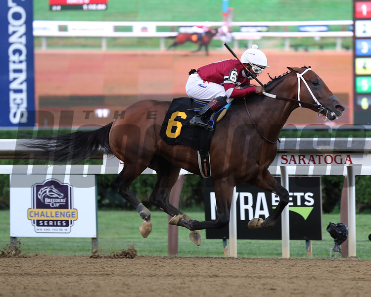 Calibrate wins a maiden special weight Saturday, August 15, 2020 at Saratoga. Photo: Coglianese Photos