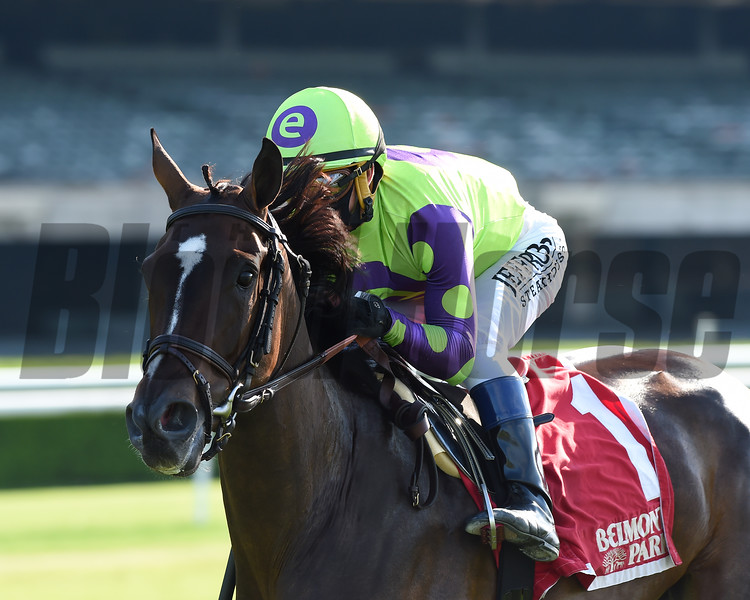 Rushing Fall wins the Beaugay Stakes Wednesday, June 3, 2020 at Belmont Park. Photo: Coglianese Photos/Chelsea Durand