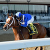 Malathaat wins the 2020 Tempted Stakes at Aqueduct<br /> Coglianese Photos/Chelsea Durand