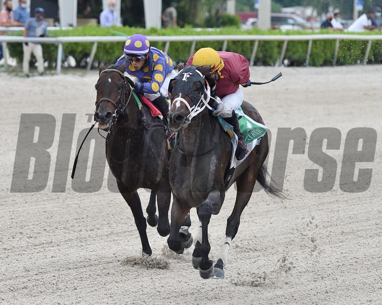 Noble Drama wins the 2020 FTBOA Florida Sire Wildcat Heir Stakes<br /> Coglianese Photos/Ryan Thompson