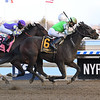 Adventist wins the 2020 Bernardini Stakes at Aqueduct<br /> Coglianese Photos/Susie Raisher