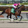 Dance d'Oro - Maiden Win, Gulfstream Park, May 3, 2020<br /> Coglianese Photos/Lauren King