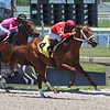 Just Right Mike - Maiden win, Gulfstream Park, May 8, 2020<br /> Coglianese Photos/Ryan Thompson