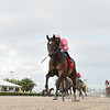 Tax wins the 2020 Harlan's Holiday Stakes at Gulfstream Park <br /> Coglianese Photos/Lauren King
