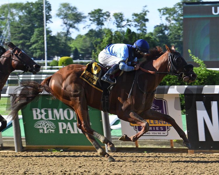 Captain Bombastic wins the Mike Lee Stakes at Belmont Park<br /> Coglianese Photos/Susie Raisher