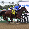 No Mo' Spending wins the 2020 Joseph A. Gimma Stakes at Belmont Park<br /> Coglianese Photos/Susie Raisher