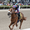 Tonalist's Shape wins the 2020 Forward Gal Stakes at Gulfstream Park<br /> Coglianese Photos/Ryan Thompson