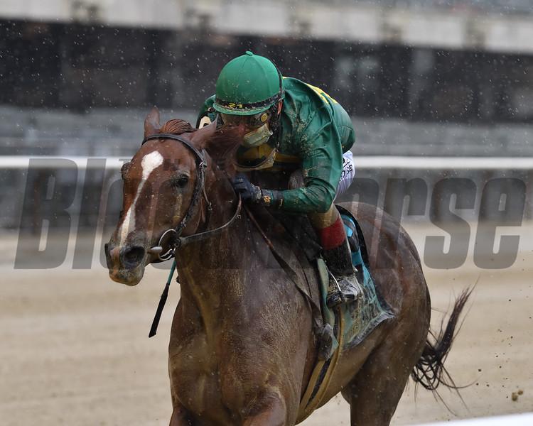 Code of Honor wins the 2020 Westchester Stakes<br /> Coglianese Photos/Joe Labozzetta