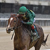 Code of Honor wins the 2020 Westchester Stakes<br /> Coglianese Photos/Joe Labozzetta
