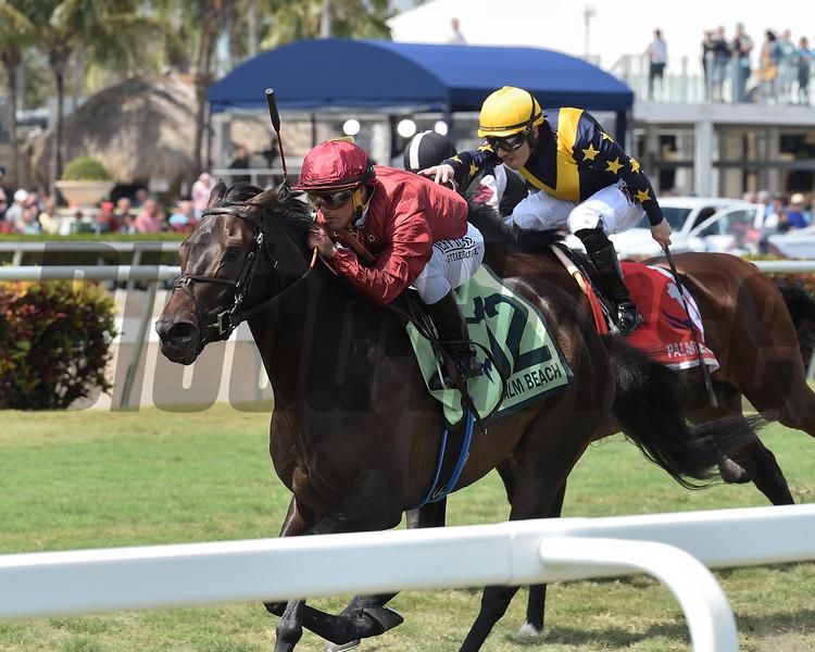 Vitalogy wins the 2020 Palm Beach Stakes at Gulfstream Park      <br /> Coglianese Photos/Ryan Thompson