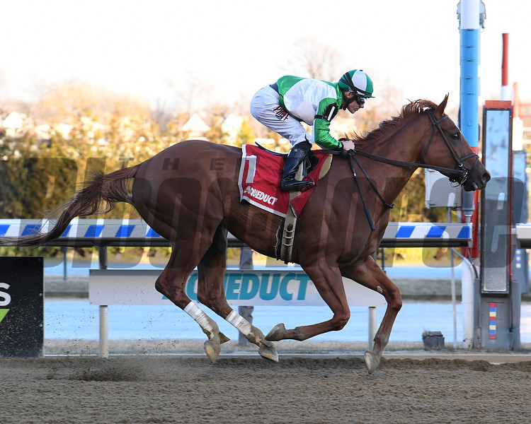 Mr. Buff wins the 2020 Haynesfield Stakes at Aqueduct<br /> Coglianese Photos/Susie Raisher