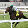 Feel Glorious wins the 2020 Forever Together Stakes at Aqueduct<br /> Coglianese Photos/Joe Labozzetta