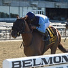 Captain Bombastic wins the Mike Lee Stakes at Belmont Park<br /> Coglianese Photos/Chelsea Durand