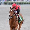 Frank's Rockette wins the 2020 Any Limit Stakes at Gulfstream Park<br /> Coglianese Photos/Ryan Thompson
