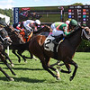 So Gracious - ALW, Saratoga, September 6, 2020<br /> Coglianese Photos