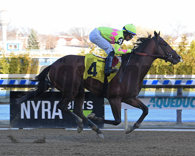 Gandy Dancing wins a maiden special weight March 15, 2020 at Aqueduct. Photo: Coglianese Photos