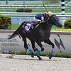 Swaggy George - Maiden Win, Gulfstream Park, May 22, 2020<br /> Coglianese Photos/Lauren King