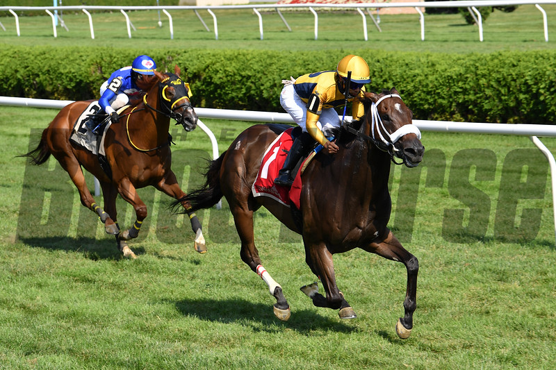 American Sailor (#2 on left) with jockey Tyler Gaffalione wins the 2020 Troy at the Saratoga Race Course Saturday when #1 Imprimis was placed third after an inquiry<br /> Coglianese Photos