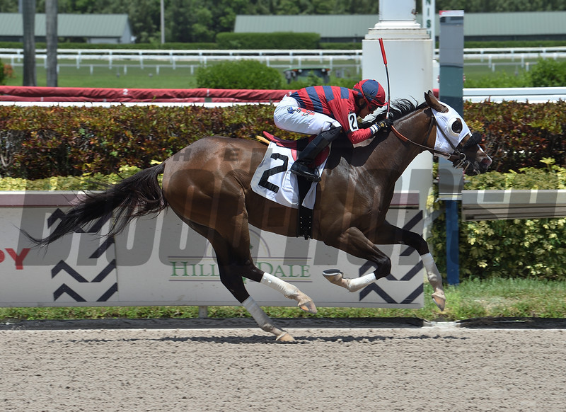 Assertiko - AOC, Gulfstream Park, July 3, 2020<br /> Coglianese Photos/Lauren King