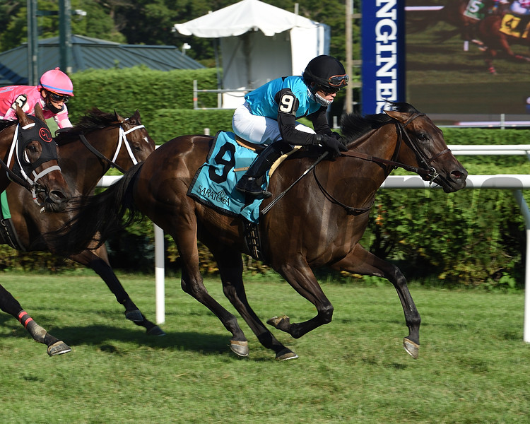 She's My Type wins the 2020 Coronation Cup Stakes at Saratoga<br /> Coglianese Photos