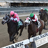 Majestic Dunhill wins the 2020 Bold Ruler Handicap at Belmont Park<br /> Coglianese Photos/Chelsea Durand