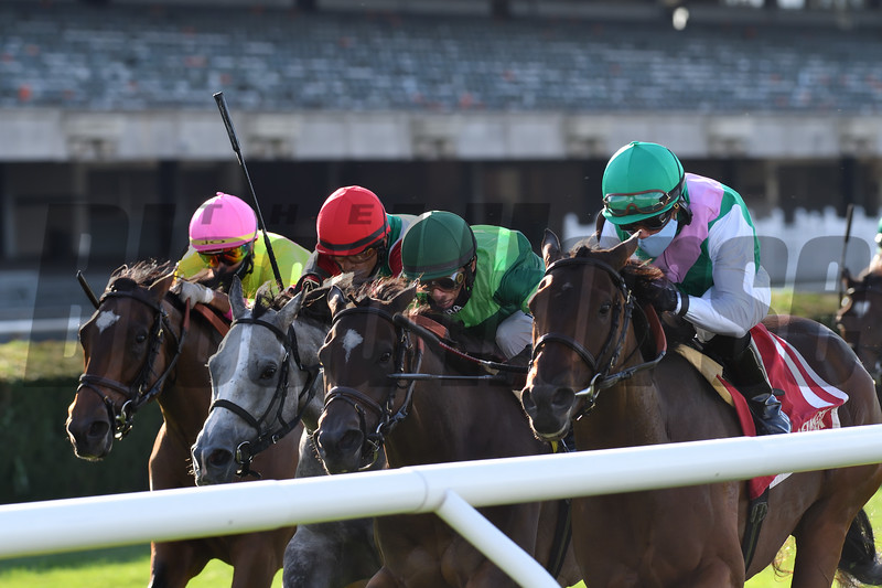 Viadera wins the 2020 Noble Damsel Stakes at Belmont Park<br /> Coglianese Photos/Chelsea Durand