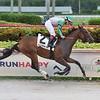 Quinoa Tifah wins the 2020 Our Dear Peggy Stakes at Gulfstream Park<br /> Coglianese Photos/Lauren King