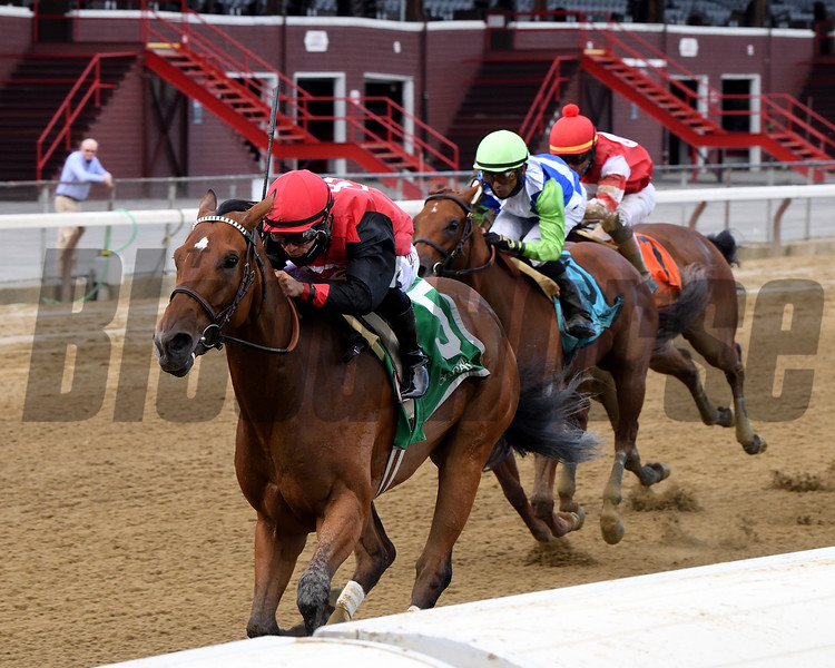 Frank's Rockette wins the 2020 Prioress Stakes at Saratoga<br /> Coglianese Photos/Chelsea Durand