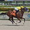 Queen Domina - Maiden Win, Gulfstream Park, September 17, 2020<br /> Coglianese Photos/Lauren King
