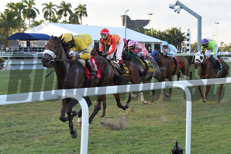 Fiya wins the 2020 Claiming Crown Canterbury Stakes<br /> Coglianese Photos/Derbe Glass