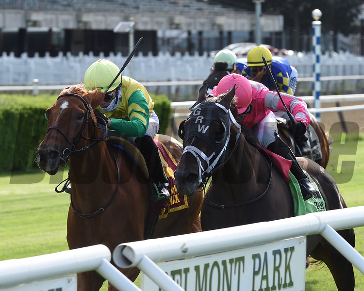 Therapist wins the 2020 First Defence Stakes at Belmont Park<br /> Coglianese Photos/Chelsea Durand