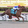 Mr Freeze wins the 2020 Gulfstream Park Mile Stakes<br /> Coglianese Photos